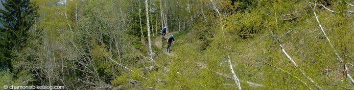 Good trails are good trails, no matter what you're riding